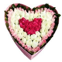 更真的爱/99枝玫瑰
