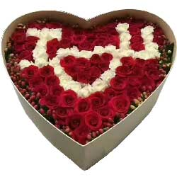 你是我的想念/99枝玫瑰礼盒