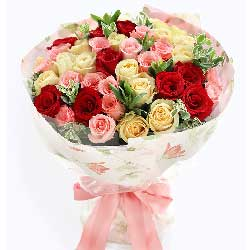 你是我唯一的选择/50枝玫瑰