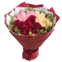 一生的追求/33枝玫瑰