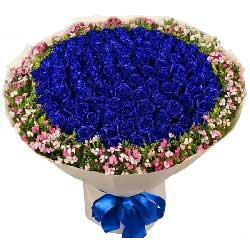 永不抛弃/99枝蓝色玫瑰