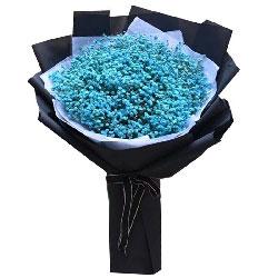永远呵护你/17枝粉玫瑰巧克力:一生一世有爱相伴/蓝色满天星