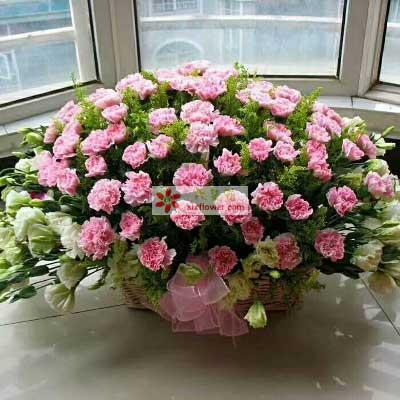 一生快乐/66枝粉色康乃馨