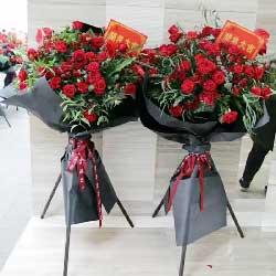 恭喜开张大吉/50枝红色玫瑰花篮
