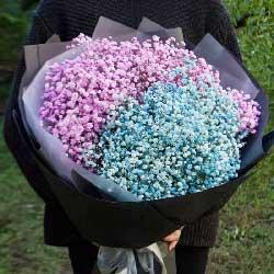 爱你就像爱生命/19枝红玫瑰:一生相随/粉色+蓝色满天星