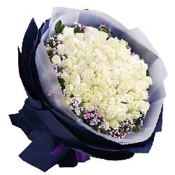 最纯洁的爱/66枝白色玫瑰