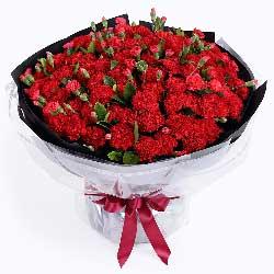 特别的问候/38枝玫瑰:牵挂/99枝红色康乃馨