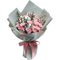 遥远的爱/16枝粉色康乃馨,5枝香槟玫瑰