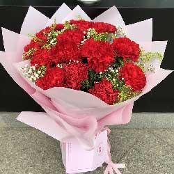 幸福像春雨/15枝红色康乃馨