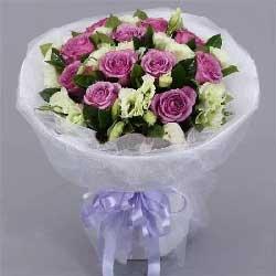 11枝紫玫瑰/美丽的问候