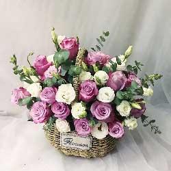 真情永久/30枝紫色玫瑰,29枝桔梗