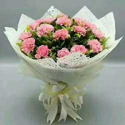 特别的问候/38枝玫瑰:您的欢笑/18枝粉色康乃馨