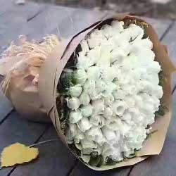 日夜想你/66枝白色玫瑰