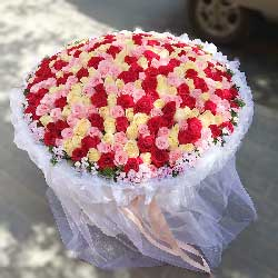 爱你天荒地老/365枝玫瑰