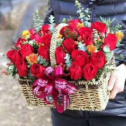 浪漫一生/25枝红色玫瑰花篮
