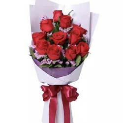 你的魅影在我心中/66枝紫玫瑰:生命里不能没有你/11枝红色玫瑰