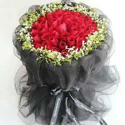 最真的情意/99枝红色玫瑰