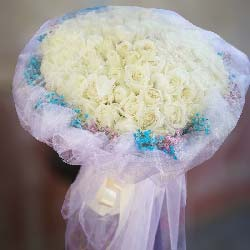 因为你/19枝玫瑰:感谢有你/99枝白玫瑰