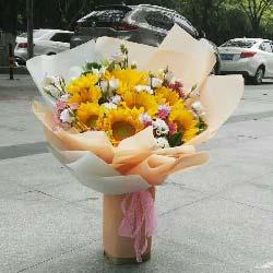 远方的祝福带给你/5枝康乃馨,5枝扶朗,5枝白色玫瑰:殷殷祝福/10枝向日葵