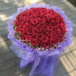 知心爱人/99枝红色玫瑰