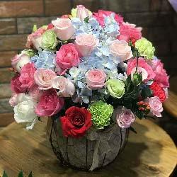 深厚的情意/39枝玫瑰