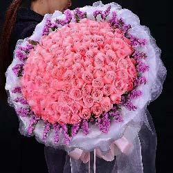 好心情/19枝香槟玫瑰:可愿与我双飞/99枝戴安娜玫瑰