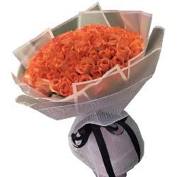 你是最绚烂的那颗星星/66枝粉色玫瑰