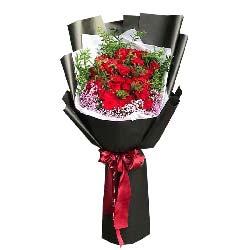 爱情的港湾/19枝红色玫瑰礼盒:一生美丽/33枝玫瑰巨型花束