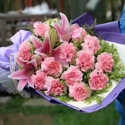 12朵粉色康乃馨,远方为你祝福