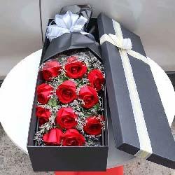 11支红玫瑰礼盒/永远的珍惜你