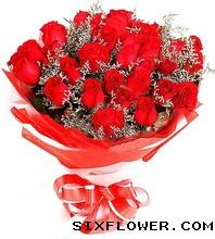 24枝红玫瑰/红红火火