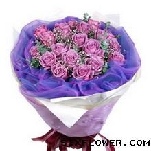 18枝紫玫瑰/快乐理由