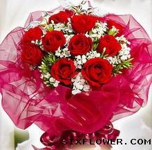 15枝红玫瑰/原谅我的突然