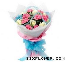 9枝白玫瑰+康乃馨/亲情无限