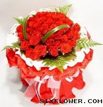 33枝红玫瑰/淡淡的风