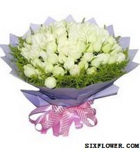 33枝白玫瑰/闪动的记忆