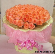 99支粉玫瑰/爱的世界