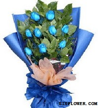9支蓝玫瑰/燃烧