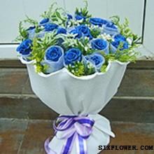 19支蓝玫瑰/每枯石烂