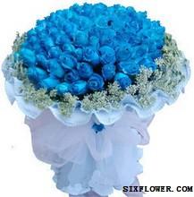 99枝蓝玫瑰_蓝色之恋