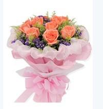 最佳女主角/11支粉玫瑰