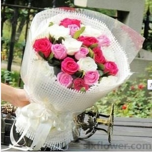 多彩缤纷/18枝玫瑰