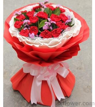 感谢您/19枝红色康乃馨