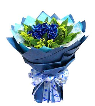 你快乐,我快乐/21支蓝玫瑰