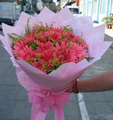 我们在成长/26支粉色太阳花