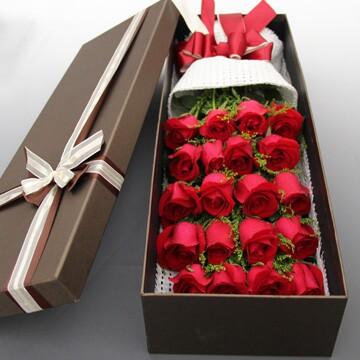 无悔一生/20支精品红玫瑰