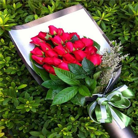 最爱的是你/34支红色玫瑰