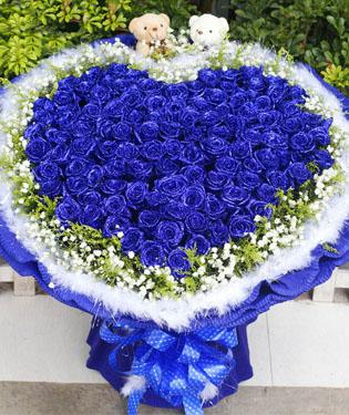 99朵蓝玫瑰心形造型
