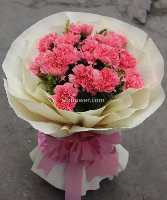 岁月变迁/16支粉色康乃馨