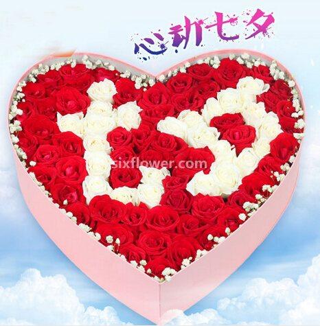 99支红白玫瑰/献给你的至爱